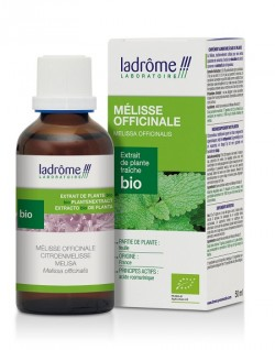 Flacon d'Extrait de Mélisse officinale bio 50 ml